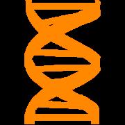 LS-DNA image